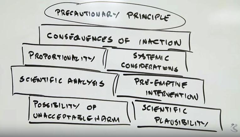 principioplausivel1